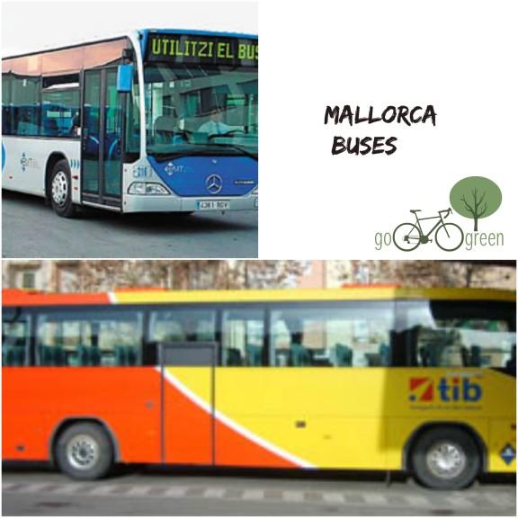 mallorca buses