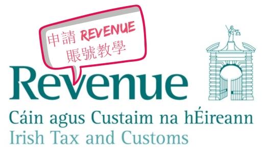 stiva teo, 愛爾蘭遊學, 申請revenue賬號